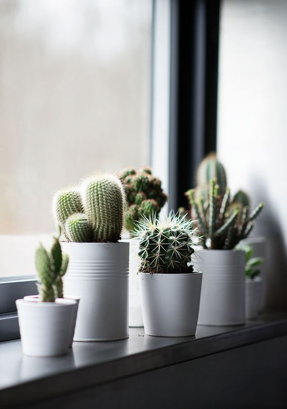 Thiet-ke-noi-that-beldecor-vn-cactus-2